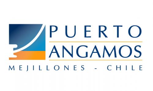 logo-puerto-angamos-1